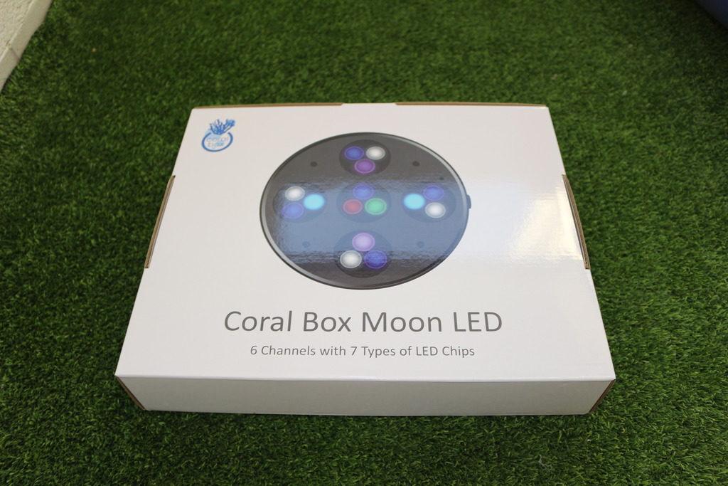 Presentación Coral Box Moon Led