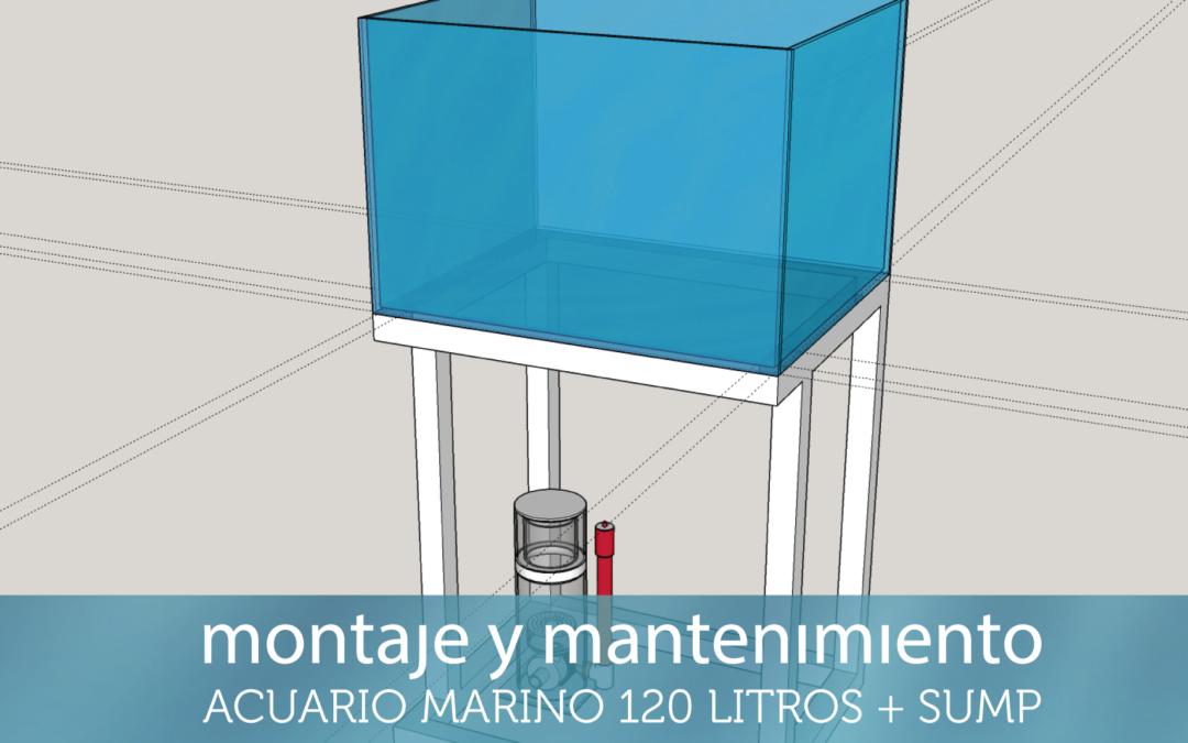 Nueva sección, montaje y mantenimiento acuario marino 120 litros